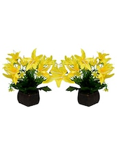 Desktop Set Of 2 Artificial Lilly Flower Arrangement With Wood Pot For Decoration - By