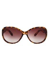 Zyaden Brown Oval Sunglasses For Women 122 - By