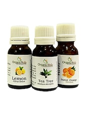 OrganoVeda Citrus Combo: Tea Tree + Orange + Lemon  Essential Oils (15 Ml Each) - By