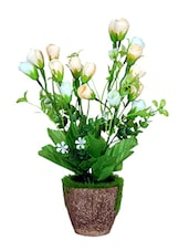 Loxiaa Peach/White Rose  Artificial  Flower With  Pot (28Cm) - By