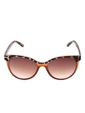 MTV-135-C4 Brown Cat-eye Sunglasses - By