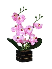 Loxiaa Multi Color Artificial  Flower Combo With  Pot (28 Cm) - By