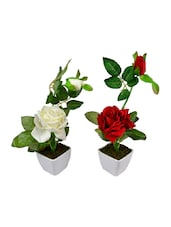 """""""The Fancy Mart Classic White Rose Artificial Flower  With Pot (22 Inch, Pack Of 2)"""" - By"""