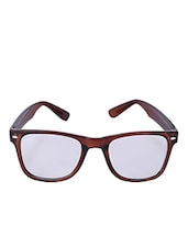 Brown & Black Plastic Wayfarer Sunglass - By