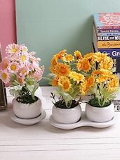 Set of 2 Amazing Pink & Yellow 16 CM Artificial Floral Plants -  online shopping for Indoor Plants