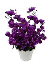 """The Fancy Purple Peony Artificial Flower  with Pot (12 inch, Pack of 1)"" -  online shopping for Flowers"