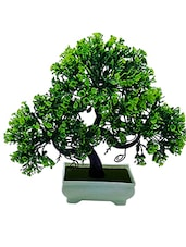 Artificial Plant With Pot - S Shaped Bonsai with Green Leaves and Green Flowers by Random -  online shopping for Indoor Plants