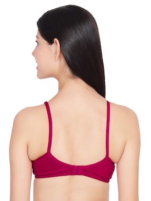 set of 2 maroon solid bras - 14901431 - Standard Image - 3