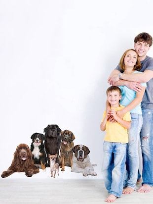 Rawpockets Wall Decals ' Living Room Cute Dog Family '  Wall stickers (PVC Vinyl) Multicolour - 15733883 - Standard Image - 3